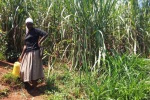 The Water Project: Sharambatsa Community, Mihako Spring -  Fetching Water
