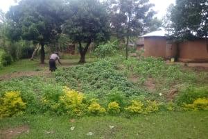The Water Project: Mwituwa Community, Shikunyi Spring -  Farm