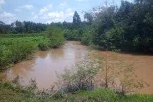 The Water Project: Musango Community, Ham Mwenje Spring -  Passing River For Bathing