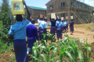 The Water Project: Eshisenye Girls Secondary School -  Carrying Water