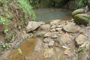 The Water Project: Shiru Community, Sammy Alumola Spring -  Current Water Source