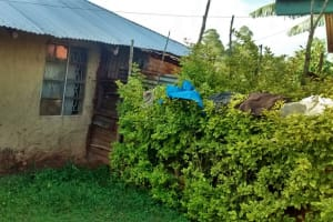 The Water Project: Ulagai Community, Rose Obare Spring -  Clothes Drying On Bushes