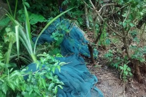 The Water Project: Shiru Community, Sammy Alumola Spring -  Mosquito Nets Not Being Used Properly
