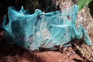 The Water Project: Ivulugulu Community, Ishangwela Spring -  Mosquito Net Being Used As Fencing