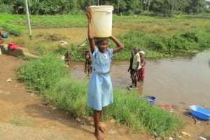 The Water Project: Tholmosor Community, Alpha Dabola Road -  Swamp