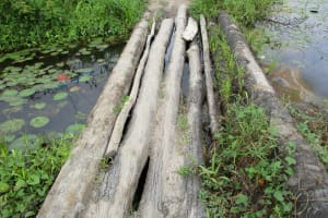The Water Project: Sanya Community -  Path Along The Swamp