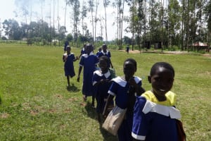 The Water Project: Bukhubalo Primary School -  School Grounds