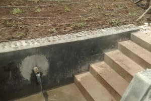 The Water Project: Rwempisi-Amanga Community -  Protected Spring