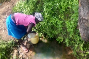 The Water Project: Musango Community, M'muse Spring -  Lilian Fetching Water