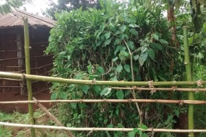 The Water Project: Elukani Community, Ongari Spring -  Bushes Planted As A Bathing Shelter