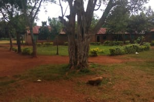 The Water Project: Shina Primary School -  School Grounds