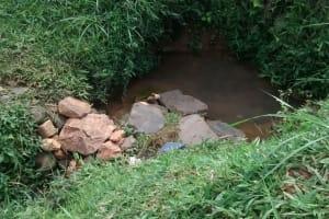 The Water Project: Jivovoli Community, Gideon Asonga Spring -  Current Water Source