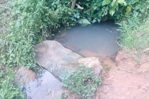 The Water Project: Koloch Community, Solomon Pendi Spring -  Current Water Source
