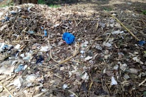 The Water Project: Bushili Primary School -  Garbage Site