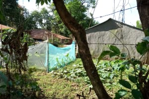 The Water Project: Masera Community, Ernest Mumbo Spring -  Mosquito Nets Being Used As Fences
