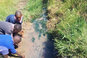 The Water Project: Luvambo Community, Tindi Spring -  Current Water Source
