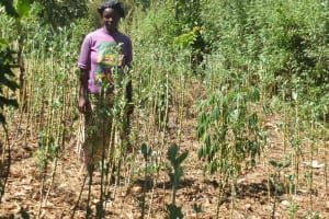 The Water Project:  Vegetable Garden