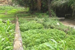 The Water Project: Tulun Community, 10 Tulon Road -  Farm