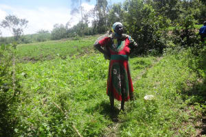 The Water Project: Masera Community, Salim Hassan Spring -  Woman Working On Her Farm