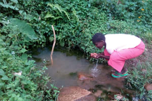 The Water Project: Samisbei Community, Isaac Rutoh Spring -  Drinking Water Straight From The Spring