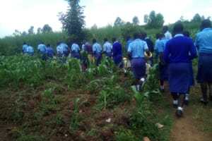 The Water Project: Sipande Secondary School -  Walking To The Spring