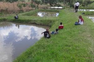 The Water Project: Ingavira Community, Laban Mwanzo Spring -  Fish Farm