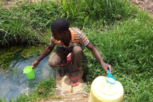 The Water Project: Luvambo Community, Tindi Spring -  Fetching Water