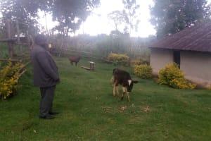 The Water Project: Koloch Community, Solomon Pendi Spring -  Household
