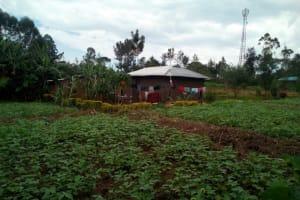 The Water Project: Muraka Community, Peter Itevete Spring -  Farm