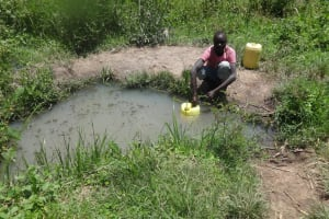The Water Project: Masera Community, Salim Hassan Spring -  Fetching Water