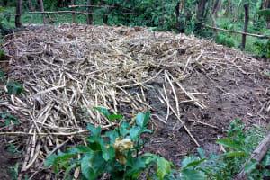 The Water Project: Muyundi Community, Baraza Spring -  Garbage Site