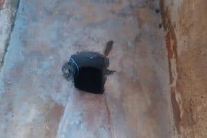 The Water Project: St. Joseph Eshirumba Primary School -  Latrine Hole