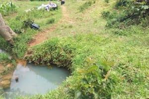 The Water Project: Matsakha Community, Siseche Spring -  Water Source