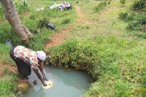 The Water Project: Matsakha Community, Siseche Spring -  Woman Fills Jerrycan With Spring Water