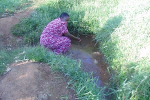 The Water Project: Luvambo Community, Timona Spring -  Fetching Water At The Spring