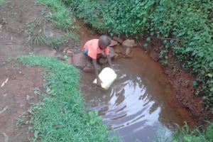 The Water Project: Musutsu Community, Mwashi Spring -  Boy Fills Up Jerrycan With Water