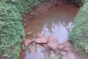 The Water Project: Musutsu Community, Mwashi Spring -  Mwashi Water Source