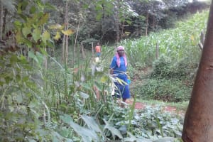 The Water Project: Musutsu Community, Mwashi Spring -  Woman Brings Jerrycan To Spring