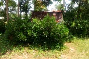 The Water Project: Mungaha B Community, Maria Spring -  Latrine Amid Brush
