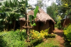 The Water Project: Mungaha B Community, Maria Spring -  Sample Homestead