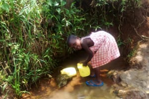 The Water Project: Mungaha B Community, Maria Spring -  Young Becky Fetching Water At The Spring