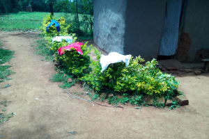 The Water Project: Chegulo Community, Yeni Spring -  Clothes Drying On Bushes