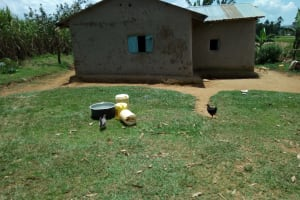 The Water Project: Chegulo Community, Yeni Spring -  Jerrycans Chickens And Pots In Yard