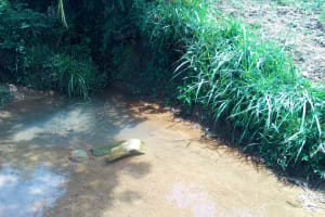 The Water Project: Chegulo Community, Yeni Spring -  Yeni Spring Water Source