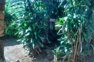 The Water Project: Ewamakhumbi Community, Yanga Spring -  Sample Bathroom Made From A Bush