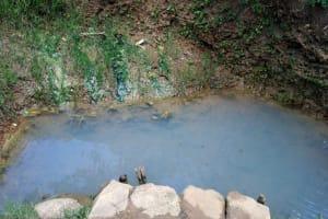 The Water Project: Chegulo Community, Werabunuka Spring -  Werabunukas Water Source