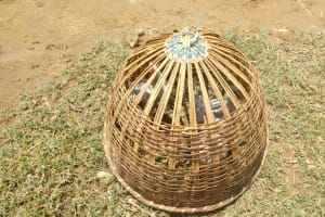 The Water Project: Emaka Community, Ateka Spring -  A Chicken Nest