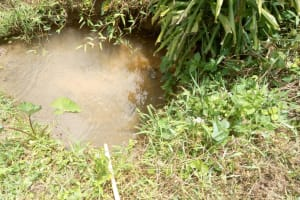The Water Project: Emaka Community, Ateka Spring -  Atuka Unprotected Water Source