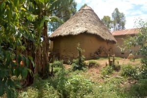 The Water Project: Emaka Community, Ateka Spring -  Sample Homestead