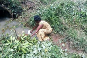 The Water Project: Lunyi Community, Fedha Mukhwana Spring -  Fetching Water